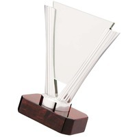 Пример награды из стекла